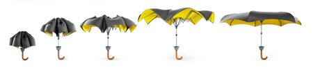 two tone umbrella kollection 3d render on white