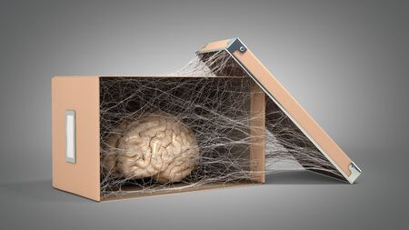 concept of abandoned mind or degradation of the mind brain in a cardboard box is covered with cobwebs 3d render on grey gradient