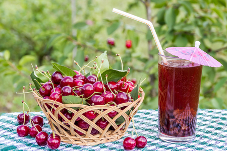 Basket of cherries and cherry beverage (compote, juice) on background of cherry tree Stock Photo