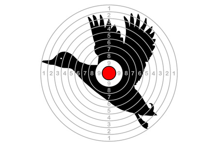 The target shooting with centre of duck, vector Illustration