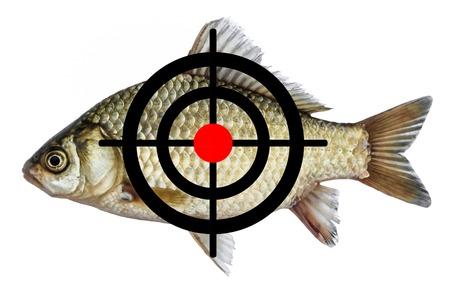 fish icon target, spearfishing goal