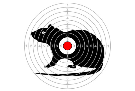 Target shooting in the center with a mouse vector