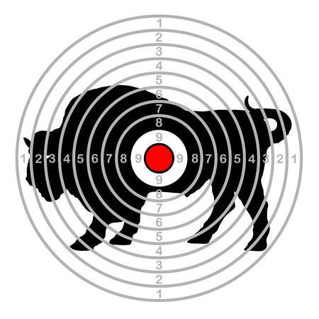 Target shoot range