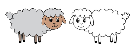 adorn: two sheep, set, vector, illustration