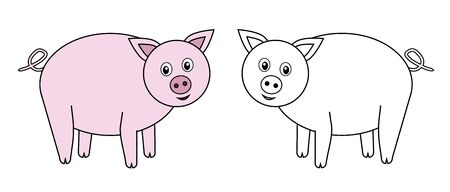 funny pictures: pigs animal. Vector, illustration Illustration