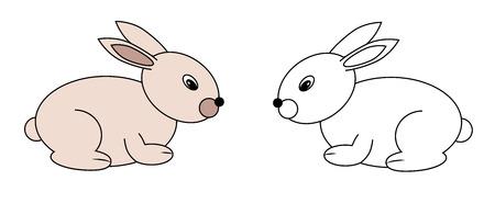 set of rabbits, vector, illustration