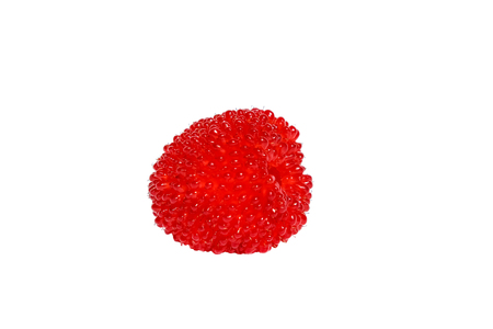 roseleaf: Roseleaf raspberry or  Rubus rosifolius (hybrid of raspberry and strawberry), isolated Stock Photo