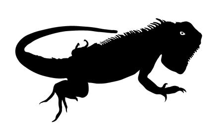 creep: Chameleon silhouette vector