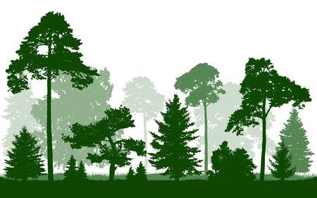 Vettore verde della siluetta della foresta, isolato su fondo bianco. Alberi, abeti, albero di natale, abete rosso, pino, betulla, quercia, cespugli.