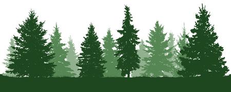 森のモミの木のシルエット。針葉樹の緑のスプルース。白い背景のベクトル