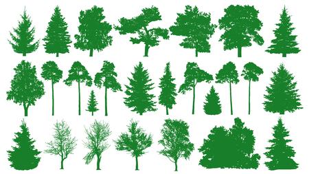 緑の木がセットされます。白い背景。針葉樹林のシルエット。モミの木、モミ、松、バーチ、オーク、ブッシュ、枝。