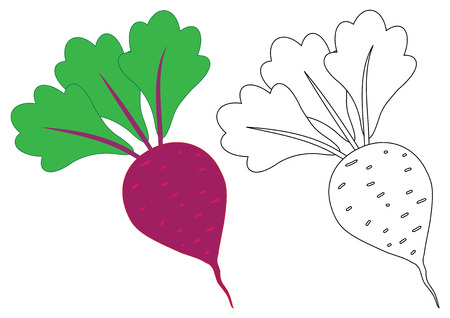 Beet cartoon. Coloring page. Game for children.