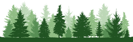 Trees pine, fir, spruce, christmas tree. Coniferous forest, vector silhouette. Evergreen Forest, vector Ilustração