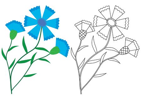 Knapweed (Cornflower) flowers. Coloring book, vector illustration