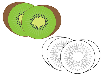 Kiwi fruit. Coloring page, game for kids. Vector illustration.