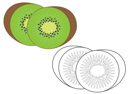 Kiwi fruit. Coloring page, game for kids. Vector illustration.