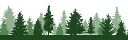Modello senza cuciture della siluetta degli alberi di abete della foresta. Abete verde di conifere. Vettore