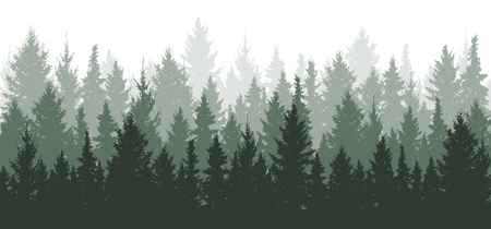 Forest background, nature, landscape. Evergreen coniferous trees. Pine, spruce, christmas tree. Silhouette vector Çizim