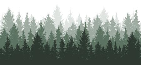 Tło lasu, przyroda, krajobraz. Wiecznie zielone drzewa iglaste. Sosna, świerk, choinka. Sylwetka wektor