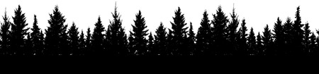 Seamless pattern of fir trees, silhouette of forest. Vector Illustration
