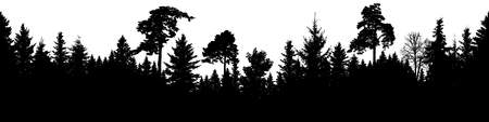 Forest silhouette vector. Scotch fir, Christmas Tree, spruce, fir, pine. Seamless panorama  イラスト・ベクター素材