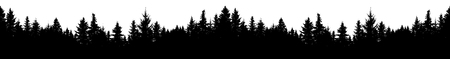 Seamless silhouette of coniferous forest, vector. Panorama evergreen Christmas Tree, spruce, fir. Isolated vector on white background  イラスト・ベクター素材
