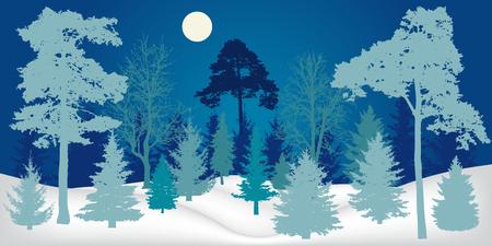 Winter landscape. Night forest, silhouette. Vector illustration