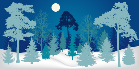 Winter landscape. Night forest, silhouette. Vector illustration