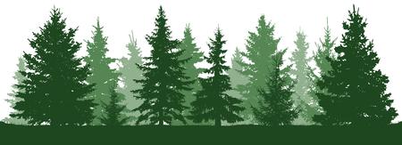 Wald-Tannen-Silhouette. Nadelgrüne Fichte. Weihnachtsbaum. Vektorillustration auf weißem Hintergrund