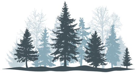 Winter forest evergreen pine, tree isolated. Park Christmas tree. Individual, separate objects. Vector illustration