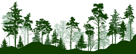Sylwetka lasu zielone drzewa. Las iglasty wiecznie zielony, park, aleja. Ilustracja wektorowa Ilustracje wektorowe