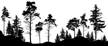Forest silhouette trees. Vector illustration. (Trees isolated from each other, free-standing) Illustration