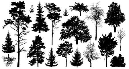 Set aus einer Vielzahl von Waldbäumen. Isoliert auf weißem Hintergrund. Sammlung von Silhouette-Vektor-Illustrationen