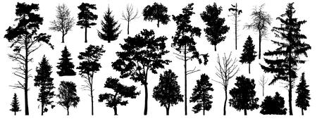 Vettore della siluetta dell'albero. Alberi della foresta isolati su sfondo bianco