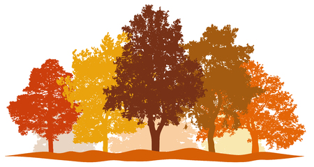 Forest trees autumn silhouette vector. City park and forest landscape background isolated set