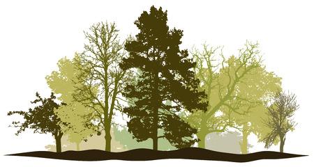 Trees forest springtime silhouette vector Ilustração