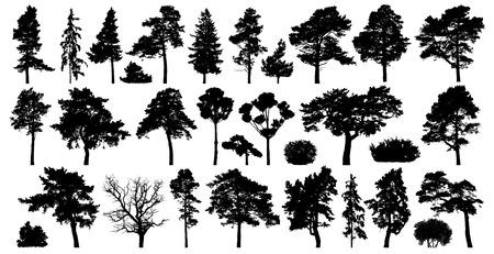 Bäume eingestellt isoliert auf weißem Hintergrund. Nadelwald-Silhouette Vektorgrafik