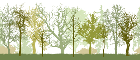 Seamless pattern of spring park (or garden, or forest) silhouette. Bare trees silhouette. Vector illustration.