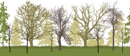 Seamless pattern of bare trees (spring garden) silhouette. Vector illustration.