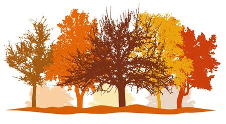 Silhouettes of autumn trees (park, forest) bright colors. Silhouettes of bare trees without foliage. Vector illustration