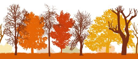 Seamless pattern of silhouette of autumn park (different trees), vector illustration.