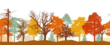 Seamless pattern of autumn forest silhouette. Bright colors of trees. Silhouettes of bare trees. Vector illustration.