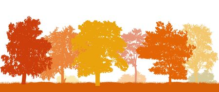 Park in autumn, beautiful silhouettes autumn trees. Vector illustration.
