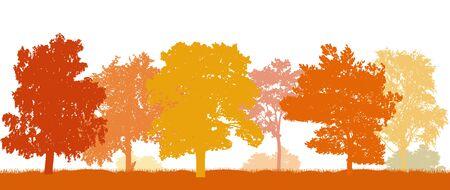 Park in autumn, beautiful silhouettes autumn trees. Vector illustration.