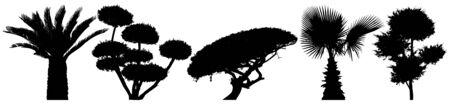 Decorative trees set. Little palm tree. Shrub vector silhouette