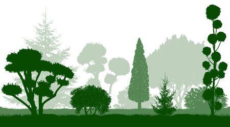 Decorative dwarf trees, garden conifers. Silhouettes. Vector illustration