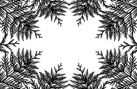 Frame from silhouette of branches of thuja tree, vector illustration