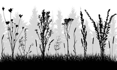 Grass with weeds on background of forest, silhouettes. Vector illustration.