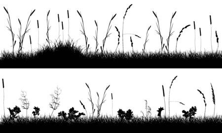 Set of templates of meadows with weeds (plants), silhouette. Vector illustration. 向量圖像
