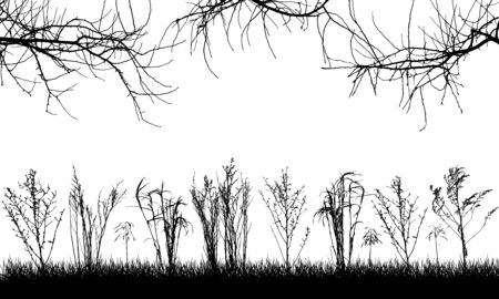 Wild plants in field, silhouette of grassland, bare branches of trees. Vector illustration.